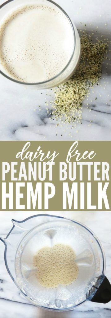 Switch up your milk habit and try this homemade peanut butter hemp heart recipe! So tasty and packed with protein! Delicious paleo and dairy free treat! thetoastedpinenut.com