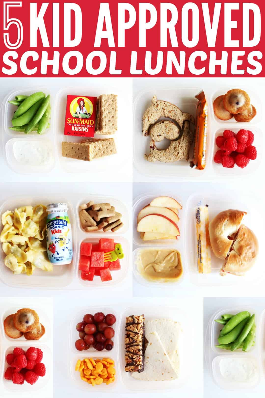 I'm always looking for new meal ideas for my kids, so today I'm sharing Five School Lunchbox Ideas that are totally kid approved! thetoastedpinenut.com #thetoastedpinenut #kid #kidapproved #school #schoollunch #lunchbox #ideas #kidmeals #kidlunch